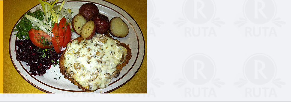 dinner | Westmont, IL | Ruta Cafe & Restaurant | 630-964-7882