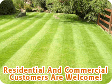 Lawn Services - Saint Cloud, MN - Paul's Lawn Care - Lawn Maitenance - Residential And Commercial Customers Are Welcome!