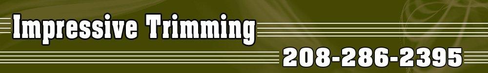 Tree Trimming - Caldwell, ID - Impressive Trimming