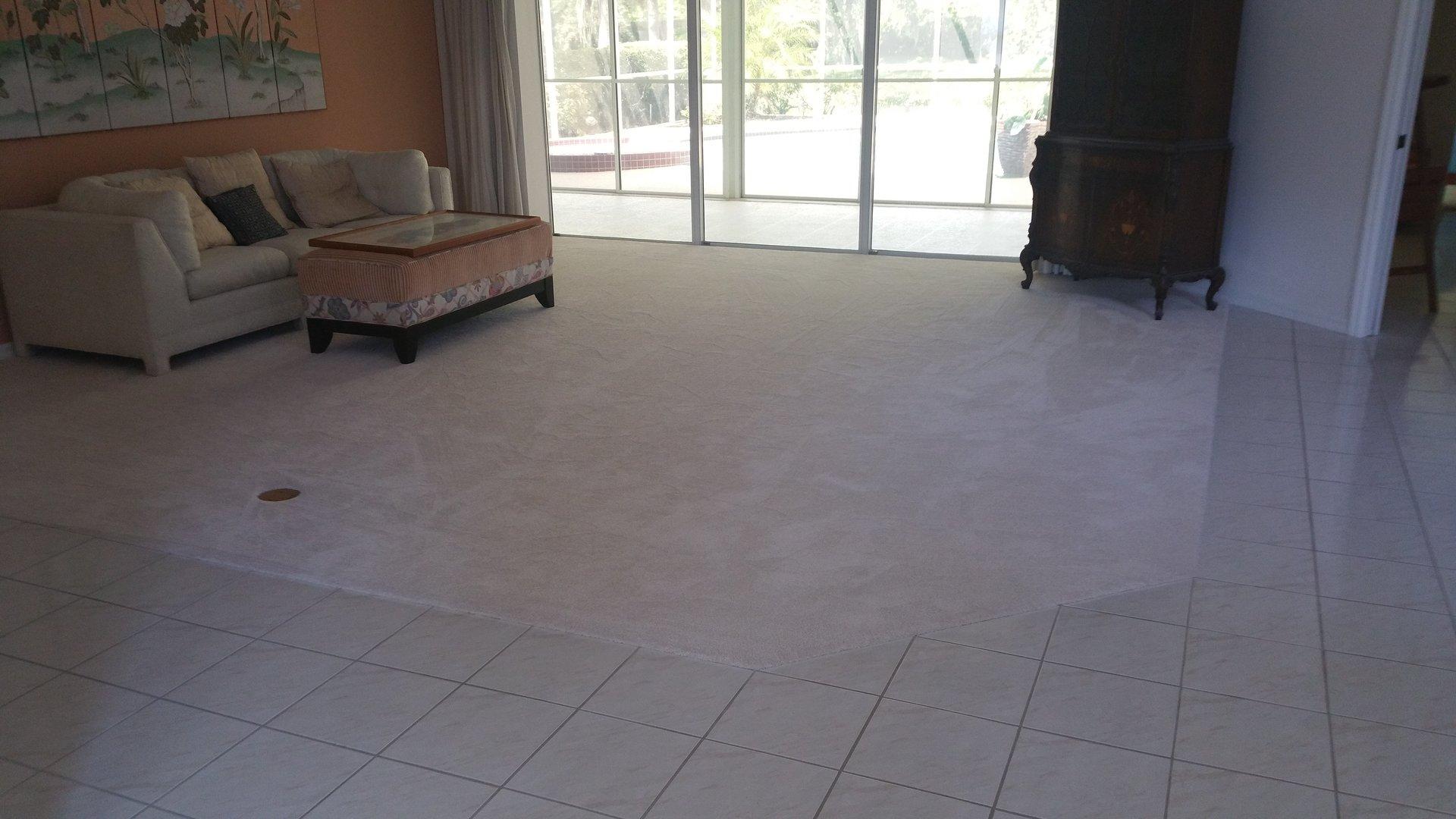 Carpets residential carpets sarasota fl carpet inset dailygadgetfo Image collections