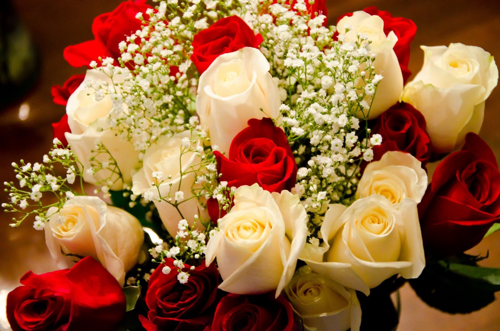 Specialty roses