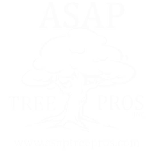 ASAP Tree Pros Inc - Logo
