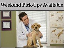 Veterinarians - Dubuque, IA - Key West Animal Clinic