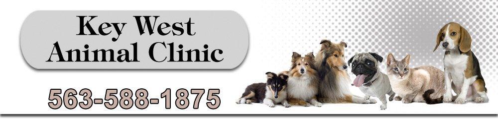 Veterinary Services - Dubuque, IA - Key West Animal Clinic