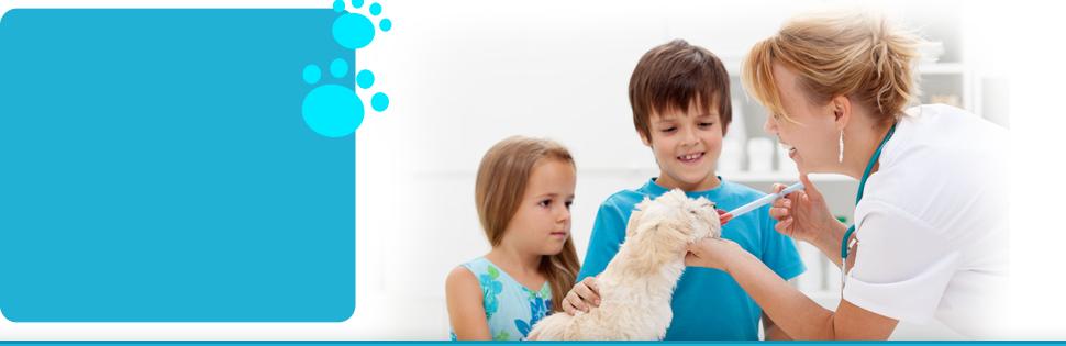 Veterinary hospital  | Flora, MS | Flora Animal Hospital | 601-879-3222