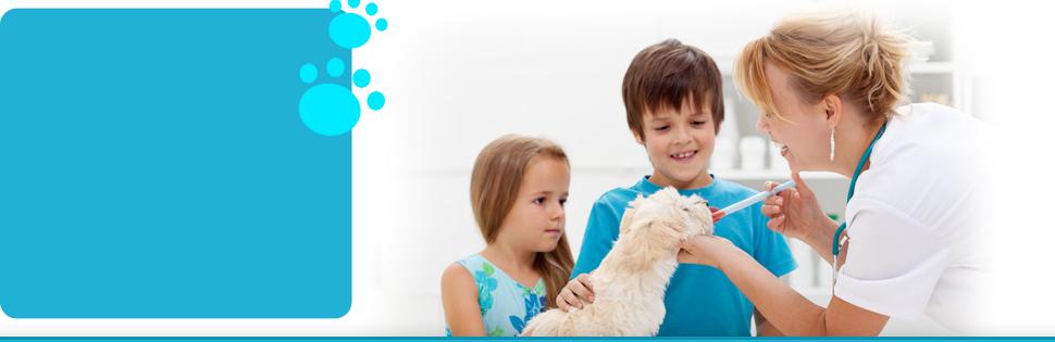 Pet grooming | Flora, MS | Flora Animal Hospital | 601-879-3222