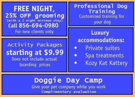 Pet Boarding, Grooming, Pet Birthday Party - Southern New Jersey - Halo House Animal Resort