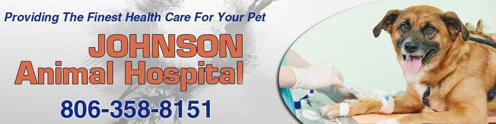 Veterinary Service - Amarillo, TX - Johnson Animal Hospital