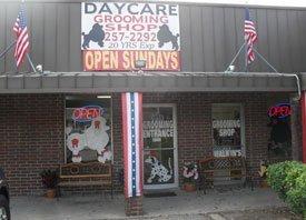 Dog Grooming - Daycare Grooming - Cedar Park, TX