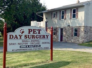 Pet Day Surgery