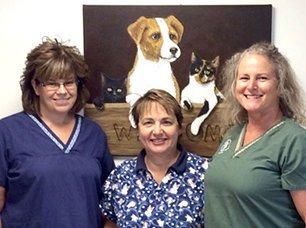 Pet Day Surgery Staff