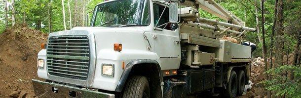 Root Removal | Petaluma, CA | Jerry's Tree Service | 707-778-8264