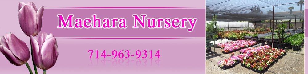 Nurseries - Fountain Valley, CA - Maehara Nursery