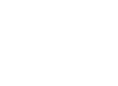 Low Price Auto Glass logo