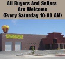 Auction House - Las Vegas, NV - Clark County Public Auction