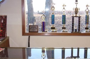 Trophies by the window