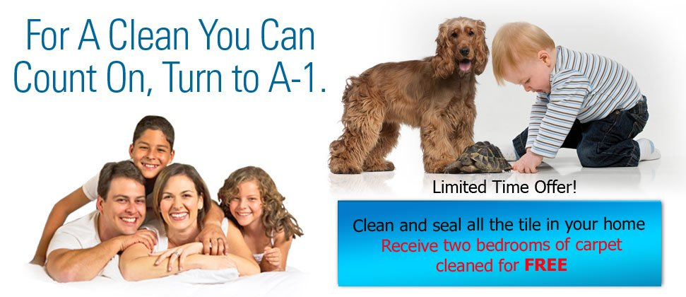 A-1 Commercial Grade Cleaning - Home - Englewood, FL