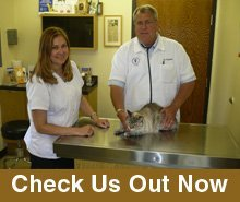 Animal Hospitals - Hales Corners, WI - Whitnall Animal Hospital