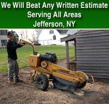 timber tree service stump grinding stump grinding jefferson ny timber tree service