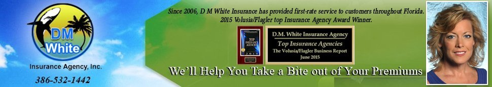 Insurance - Deltona, FL - DM White Insurance Agency, Inc.