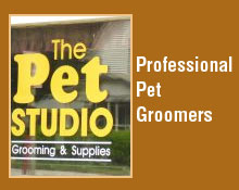 Dog Grooming Services - Marion, IA - The Pet Studio