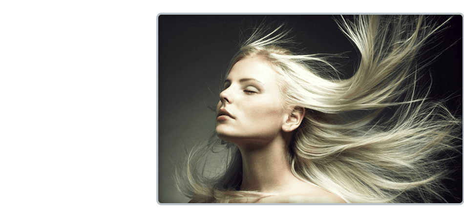 Beauty Salon | Emporia, KS | Trend Centre Hair Design | 620-342-9515