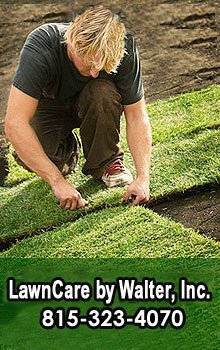 Lawn Care - Rockford, IL - LawnCare by Walter - lawn sod - Environmentally Safe Lawn Care $19 First Service Lawn Care By Walter, Inc. (815)332-9544