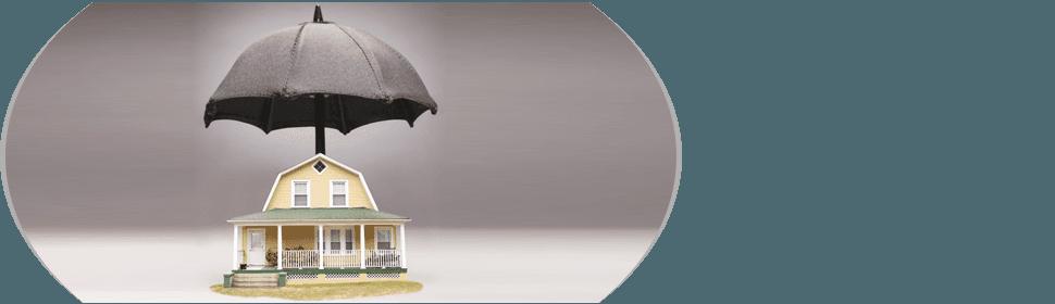 Personal Insurance Plan | Elk Grove Village, IL | Johnson Insurance Agency Inc | 847-437-0030