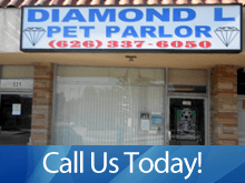 Dog Grooming - West Covina, CA - Diamond