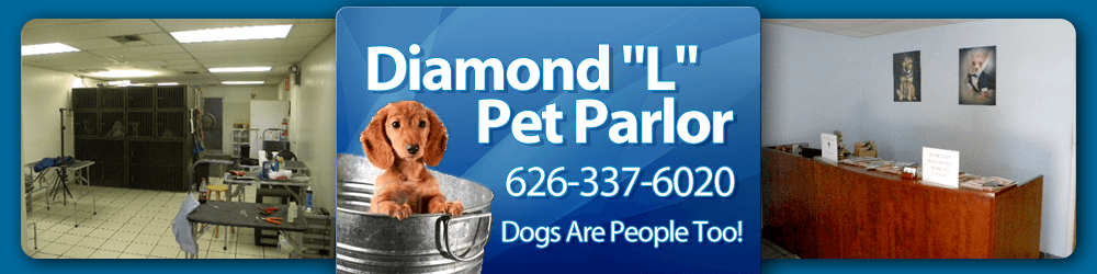 Pet Salon - West Covina, CA - Diamond