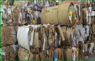 Trash papers to recycle