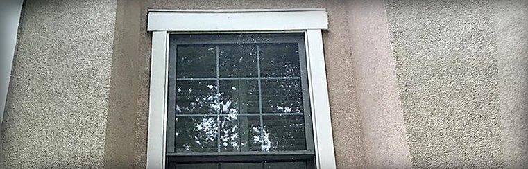 Window Services