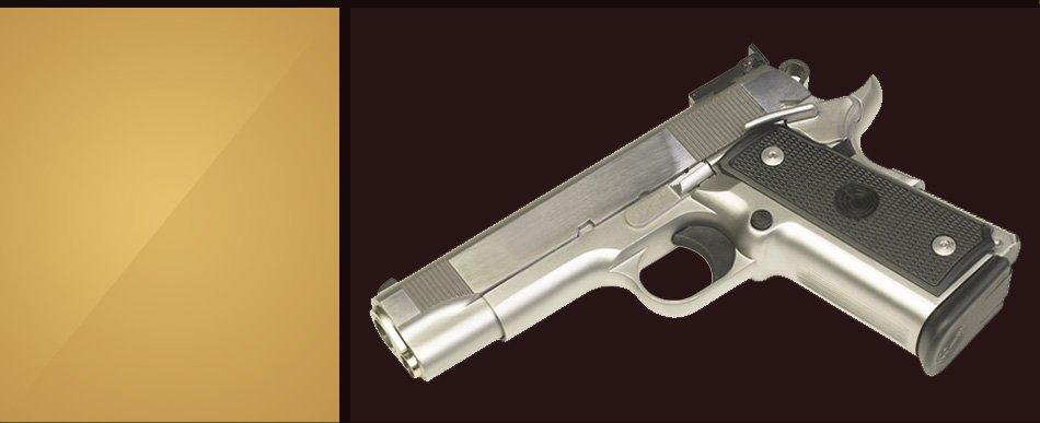 Gun pistol on white background