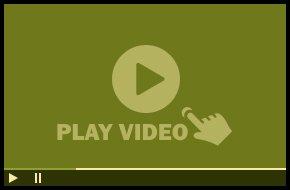 Taylor Equine Hospital Video