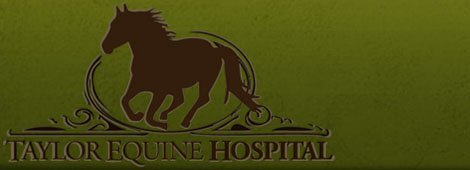 veterinarian | Turlock, CA | Taylor Equine Hospital | 209-669-8600