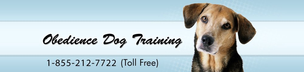 Dog Trainer Walden, NY ( New York ) - Serving Orange, Dutchess, Rockland, Ulster, Putnam, Sullivan, and Westchester Counties - Obedience Dog Training
