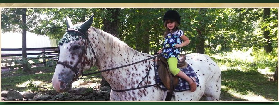 Riding Lessons | Walden, NY | Saddle Brook Farm Animal Rescue | 845-778-3420