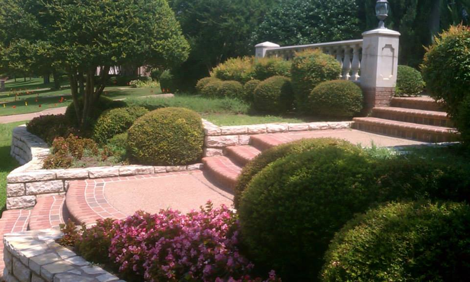 Landscaping and Hardscaping service