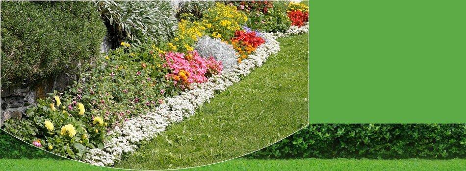 Gardening | Santa Maria, CA | Knudsen Gardening & Landscaping Inc. | 805-354-5925