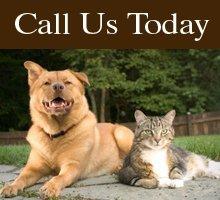 Animal Care Services - Waco, TX - Waco Animal Emergency Clinic