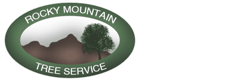 Tree pruning | Loveland, CO | Rocky Mountain Tree Service | 970-635-9040