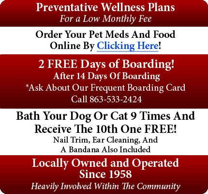 Bartow Animal Clinic - Veterinary - Fort Meade, FL