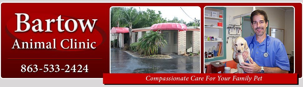 Veterinary - Fort Meade, FL - Bartow Animal Clinic