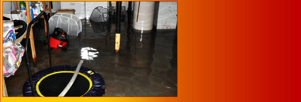 Ace Fire & Water Restoration Inc_Sprinklers
