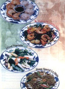 Chinese Restaurant - Lebanon, PA - Dragon Garden Chinese Restaurant - steamed or fried dumplings, shrimp with garlic sauce, mixed vegetable, house special lo mein