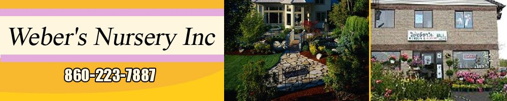 Landscaping New Britain, CT - Weber's Nursery Inc