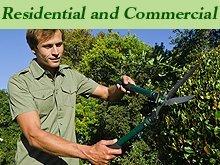 Tree Service - Hays, KS - Paul's Lawn & Tree Service