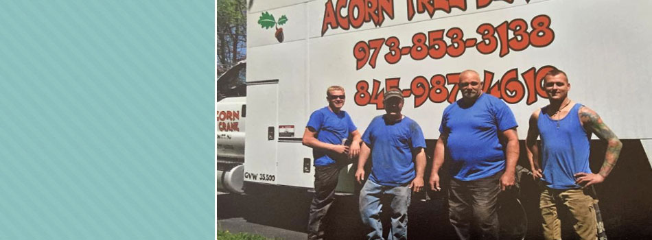 Snow plowing | Monroe, NY | Acorn Tree & Crane Service | 845- 987-4610