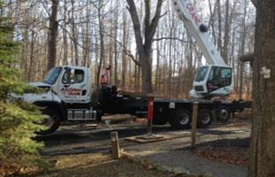Land clearing | Monroe, NY | Acorn Tree & Crane Service | 845- 987-4610