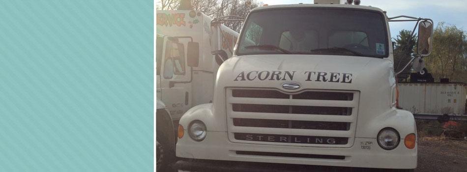 Crane service | Monroe, NY | Acorn Tree & Crane Service | 845- 987-4610